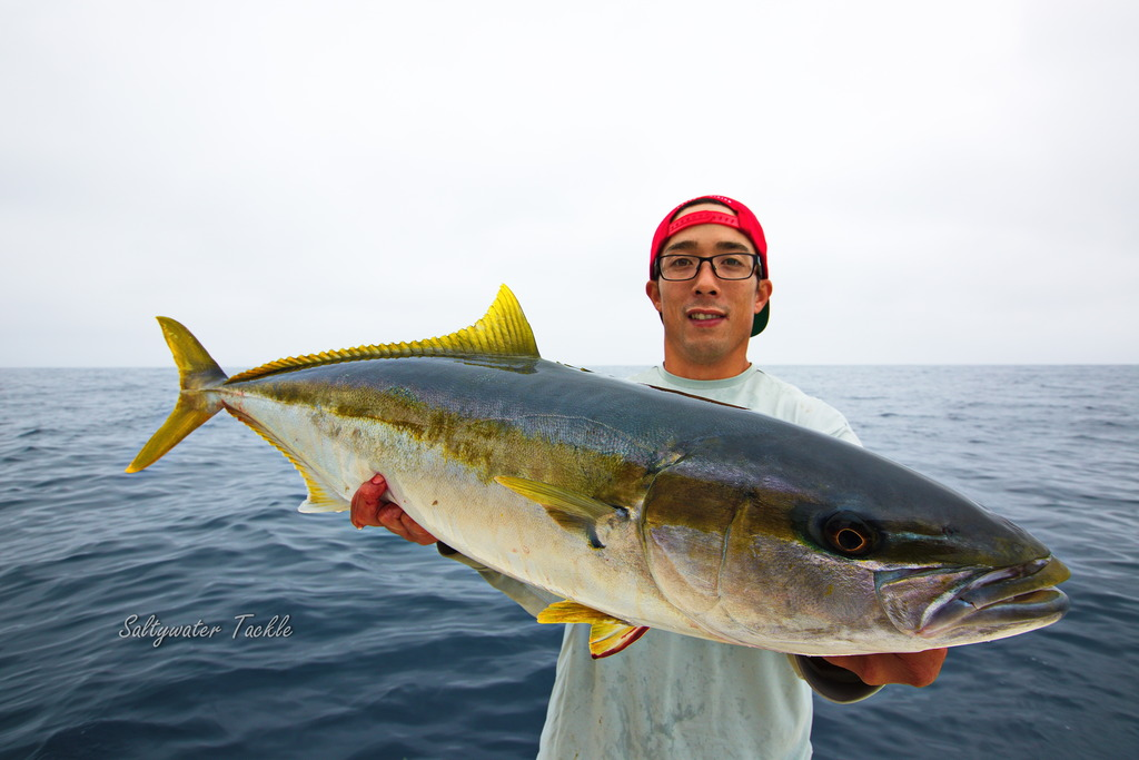 Win Some, Lose Some…Just Gotta Keep Going. Bluefin and Yellowtail Trip with a Surprise!