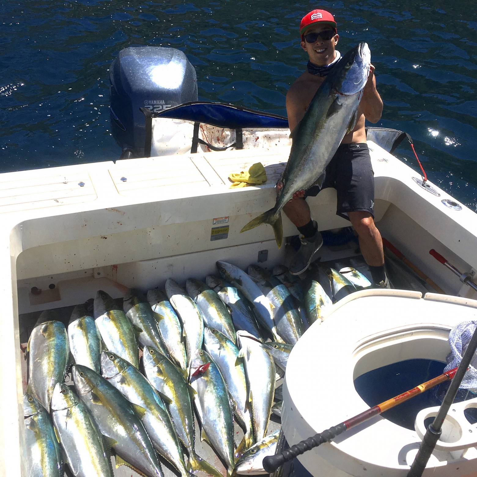 Wide Open Yellowtail (Hamachi) Fishing ! Full Limits! Live Squid and Iron Jig Fishing